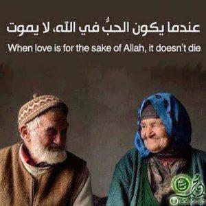 Love for Allah's sake